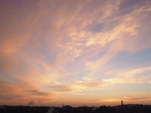 Sunday_AM_looking_east.JPG